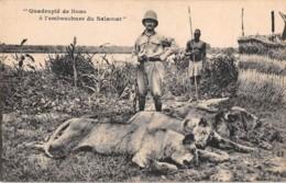 Tchad - Ethnic / 26 - Chasse - Quadruplé De Lions - Tchad