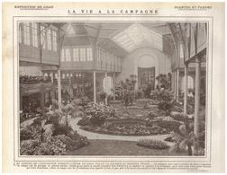 1908 - Iconographie - Lille (Nord) - L'exposition Horticole - FRANCO DE PORT - Alte Papiere