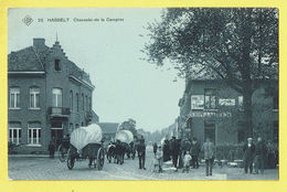 * Hasselt (Limburg) * (SBP, Nr 22) Chaussée De La Campine, Estaminet Halte Du Tram, Animée, Char, TOP, Zeldzaam, Rare - Hasselt
