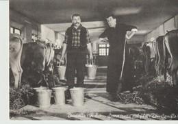 CP - PHOTO - BRESCELLO - SCENA TRATTA DAL FILM DON CAMILLO - - Posters On Cards