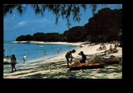 C333 BARBADOS - SAINT MICHAEL - BEAUTIFUL PARADISE BEACH KNOWN AS PARADISE BAY - Barbados