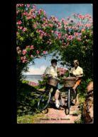 C334 BERMUDA - OLEANDER TIME IN BERMUDA CIRC. 1959 - Bermuda
