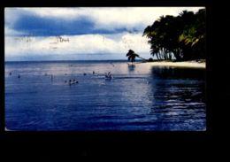 C335 TRINIDAD E TOBAGO - PIGEON POINT - PELICANS ENJOYING A SEA BATH - Trinidad