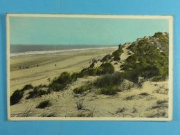 Coxyde S/Mer Mer Et Dunes - Koksijde