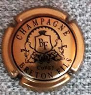 CAPSULE  CHAMPAGNE - Champagne