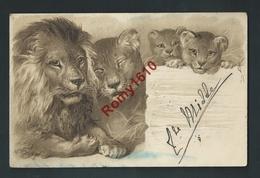 Lions Adultes Et Lionceaux. Litho Gaufrée, Relief, Embossed. Voyagée. Voir Dos. 2 Scans. - Lions