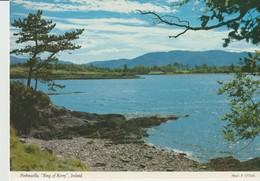 CP - PHOTO - PARKNASILLA - RING OF KERRY - JOHN HINDE - 2/22 - Irlande