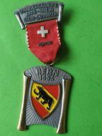SVIZZERA  Berna 1973 - Medaillen & Ehrenzeichen