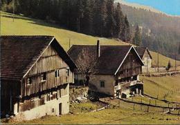 Paysage Du Haut Doubs - Photo Stainacre - Non Classés