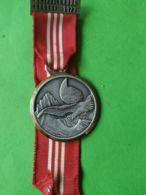 SVIZZERA  Premio Urdorf 1973 - Medaillen & Ehrenzeichen