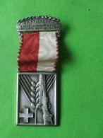 SVIZZERA  Gare Di Tiro Concorso Individuale 1949 - Medaillen & Ehrenzeichen
