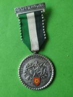SVIZZERA  Tiro Amichevole 1969 - Medaillen & Ehrenzeichen