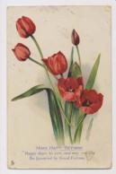 AJ97 Birthday Greeting - Flowers, Tulips - Anniversaire