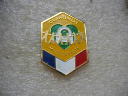 Pin's De L'orphelinat Mutualiste De La Police Nationale De La France - Police