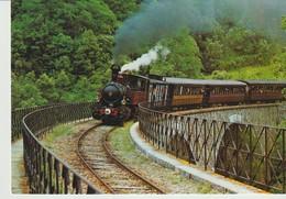 CP - PHOTO - CHEMIN DE FER DU VIVARAIS - LIGNE TOURNON LAMASTRE - TRAIN SUR LE VIADUC DE TROYE - 15 JUIN 1975 - C.F.T.M. - Treni