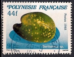French Polynesia 1988 - Sea Shells - Usati