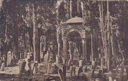 Turquie Constantinople Tombeau Du Cheval Du Sultan Mahmoud - Turquie