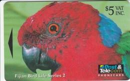 Fiji - Red Brested Musk Parrot - 15FIC - Fiji
