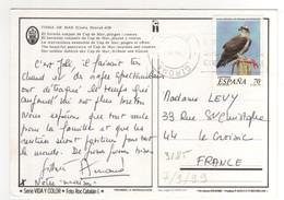 """Timbre , Stamp Yvert  N° 3185 """" Rapace """"  Sur CP , Carte , Postcard Du 07/09/1999 Pour La France - 1991-00 Lettres"""