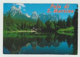29.6.2008  -  AK/CP/Postcard -  Südtirol/Dolomiten/Pale D. San Martino  -  Siehe Scans  (it S.  Martino) - Italien
