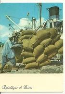 GUINEE - CONAKRY / CHARGEMENT DE PALMISTES AU PORT - French Guinea