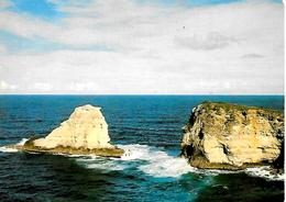 CPM-1972-GUADELOUPE-Le MOULE-PORTE D ENFER-TBE - Basse Terre