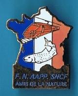 PIN'S //  ** F. N. / AAPP. / SNCF / AMIS DE LA NATURE ** - TGV