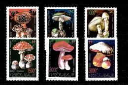 Serie De Vietnam Nº Yvert 2275/80 ** SETAS (MUSHROOMS) - Vietnam