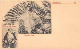 Zanzibar - Ethnic / 68 - Beau Cliché Précurseur - Tanzanie