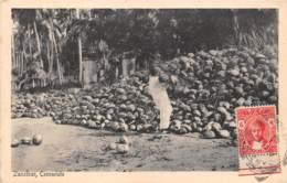 Zanzibar - Ethnic / 76 - Cocoanuts - Tanzanie