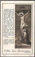 DP. GEORIUS VAN DEN BERGHE ° DE PINTE 1891 - +NAZARETH 1913 - Religion & Esotérisme
