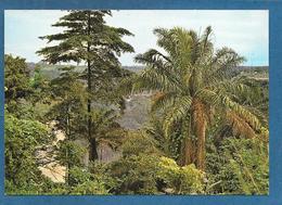 CONGO ZAIRE CHUTES DE ZONGO UNUSED - Congo - Kinshasa (ex Zaire)