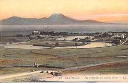 Tunisie -  CARTHAGE Vue D'ensemble Des Anciens Ponts  -  - Edition  LL  N°14 *PRIX FIXE - Tunisia