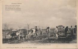 I24 - 74 - DOUVAINE - Haute-Savoie - Premiers Labours - Douvaine