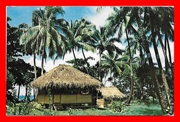 CPSM/pf  Le Fare Polynésien (Tahiti)...I0342 - Tahiti