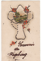 SOUVENIR DE WEGBERG (Fleurs Rouges, Carte Avec Paillettes) - Wegberg
