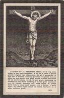 DP. ERMELINA HANNART ° ANTWERPEN 1874 -+ LIER 1918 - Religión & Esoterismo
