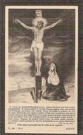 DP. HENRICUS DE WAELE ° LOVENDEGEM 1859 -+ 1910 - Religion & Esotérisme