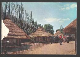 Brussel - Wereldtentoonstelling 1958 - Afdeling Van Belgisch Kongo En Ruanda-Urundi - Kongolese Tuin: Het Dorp - Expositions Universelles