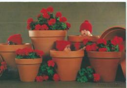Anne Geddes Flower Pot Geranium - Künstlerkarten