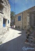 * Cyprus 1990's Postcard * Village Scene * Collection : Triarchos Helios New: 8082 * - Cyprus