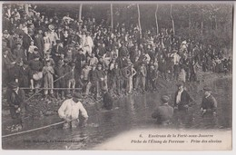 LA FERTE SOUS JOUARRE (77) : PECHE DE L'ETANG DE PERREUSE - PRISE DES ALEVINS - ECRITE EN 1906 - 2 SCANS - - La Ferte Sous Jouarre