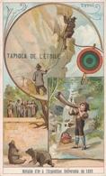 Chromo TYROL Tapioca De L' étoile Médaille D'or à L'exposition Universelle De 1889 Paris Zoo Ours Alpiniste - Autres
