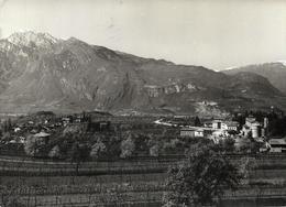 Povo M. 398 (Trentino) - Panorama - Italia