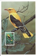 1992 Loriot Jaune, Pirol, Oriolus Oriolus, Wielewaal, Dessin:Johan De Crem, Michel 2019:1307, 14+2Fr. 2Scans - Maximum Cards