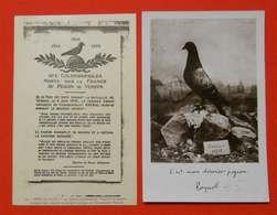 Ww1  2 Cartes Colombophiles Don Dernier Pigeon Verdun Colombogramme  Poilus Sans éditeur Dos Scanné - 1914-18
