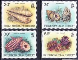 BIOT British Indian Ocean Territory 1996 Marine Life Shells Complete Set Mi 179-182 MNH **, I Sell My Collection! - British Indian Ocean Territory (BIOT)