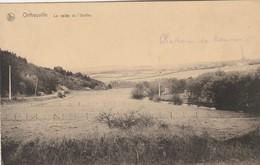 Ortheuville  ,( Tenneville ), La Vallée De L'Ourthe ; Voir La Flêche Qui Indique Le Château De Roumont ( LIBIN ) - Libin
