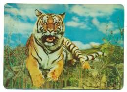 Trójwymiarowa Lenticulaire 3D - Zwierzęta Tygrys - Tigri
