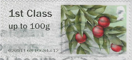 GB 2014 Winter Greenery 1st Type 4 Used Issuing Office 020511 [32/160/32D] - Great Britain